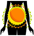 silhouette of woman with abstraction on stomach vector image vector image
