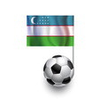 Soccer Balls or Footballs with flag of Uzbekistan vector image vector image