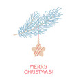 spruce branch with christmas star toy on white vector image
