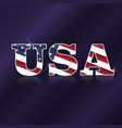 usa flag symbol vector image