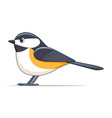 black capped chickadee bird on a white background vector image