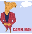 Cartoon character camel vector image