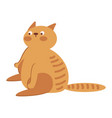 fat cat icons vector image