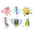 Flying insects vector image