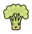 kawaii cartoon broccoli vector image vector image