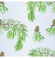 seamless texture branch pine tree and pine cone vector image vector image