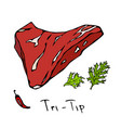 tri-tip steak cut isolated on white vector image vector image