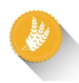 wheat organic product beer shadow vector image vector image