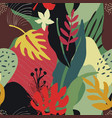 colorful collage contemporary natural vector image