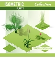 Isometric plants collection vector image vector image