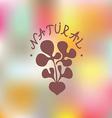 Natural food Embleme vector image vector image