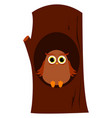 owl in tree on white background vector image vector image