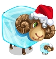 Christmas sheep in ice cube isolated vector image vector image