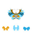 collection of colorful butterflies vector image