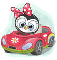 cute penguin girl goes on the car vector image