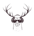 deer in music headphones vector image vector image