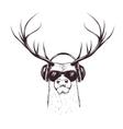 deer in music headphones vector image