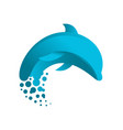 dolphin design inspiration vector image