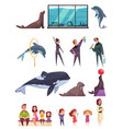 dolphinarium essential characters set vector image vector image