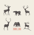 drawn deers bears logotype vector image vector image