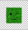 green grass square field 3d face wink smile vector image