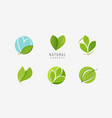 leaf logo nature eco symbol or icon vector image vector image