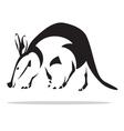 Aardvark vector image