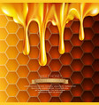 background with honeycombs and honey vector image vector image