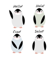Funny penguins on white background Hello in vector image