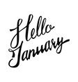 lettering phrase hello january vector image