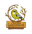 oriental greenfinch vector image vector image