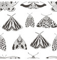 summer moth seamless pattern vector image vector image