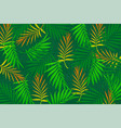 tropical leaves palm background vector image vector image