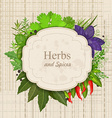 Vintage card with herbs and spices on canva vector image vector image