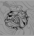 bulldog wearing hat vector image vector image