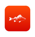 fish icon digital red vector image vector image