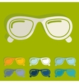 Flat design sunglasses vector image