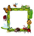 grass frame with many insects vector image