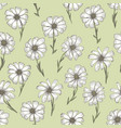retro pattern with white chamomile flower on green vector image vector image