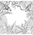 tropical plants and birds square frame vector image vector image