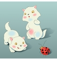 Two kitten plays with ladybird vector image vector image