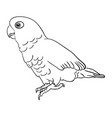 cockatoo bird line art 01 vector image vector image