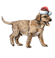 Labrador Retriever 14 vector image vector image
