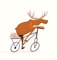 moose riding bicycle funny cartoon animal racing vector image