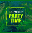 summer time party background palm leaf sky vector image