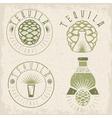 tequila vintage grunge set labels with agave vector image