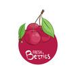 bright cherry icon vector image vector image