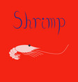 flat on background sea shrimp vector image vector image
