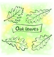 Oak Leaves Pictogram Set vector image vector image