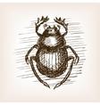 Scarab beetle hand drawn sketch vector image vector image